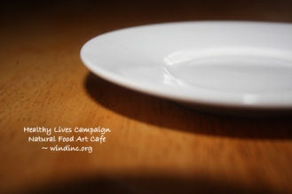 HLC NFAC White Saucer III